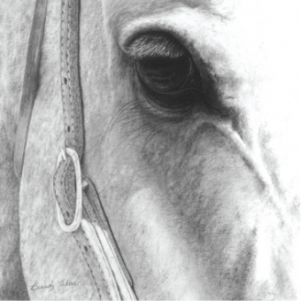 Brandy Hebbes 'gentlestrength' graphite & charcoal
